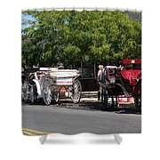 Horse And Carriage Ride Shower Curtain