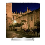 Horse And Carriage Seville Spain Shower Curtain