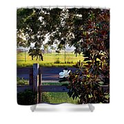 Horse And Flower Shower Curtain