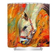 Horse And Grass Shower Curtain