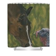 Horse And Turkey Shower Curtain