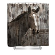 Horse At Home On The Range Shower Curtain