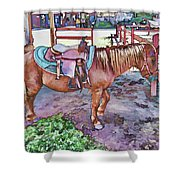 Horse At Zoo Shower Curtain