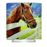 Horse By Nicholas Nixo Efthimiou Shower Curtain