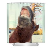 Horse Facial Expressions Are Nearly Identical To Those Of Humans Shower Curtain