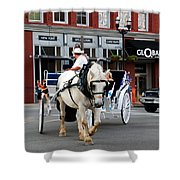 Horse Carriage In Nashville Shower Curtain