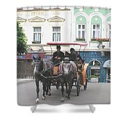 Horse Carriage Shower Curtain