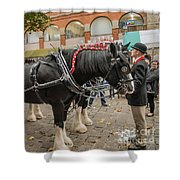 Horse Dray Shower Curtain