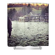 Horses On A Frosty Pasture Shower Curtain