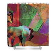 Horse Dreams Shower Curtain