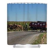 Horse Driven Shower Curtain