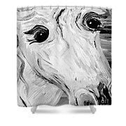 Horse Eyes Shower Curtain