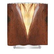 Horse Eyes Love Shower Curtain