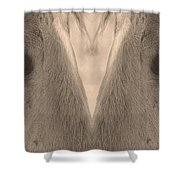 Horse Eyes Love Sepia Shower Curtain