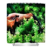 Horse Family Shower Curtain