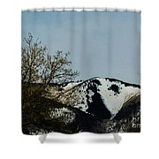 Horse Head In The Winter Shower Curtain