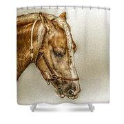 Horse Head Portrait Shower Curtain