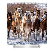 Horse Herd In Snow Shower Curtain