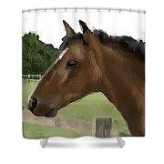 Horse In Field Shower Curtain