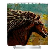 Horse In Heaven Shower Curtain