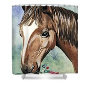 Horse In Love Shower Curtain