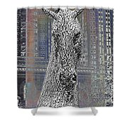 Horse In The City Shower Curtain