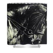 Horse In The Dark II Shower Curtain