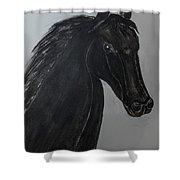Horse Named Misty Shower Curtain