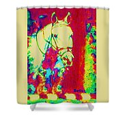 Horse Painting Jumper No Faults Psychedelic Shower Curtain