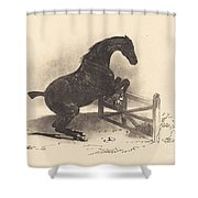 Horse Jumping A Barrier Shower Curtain