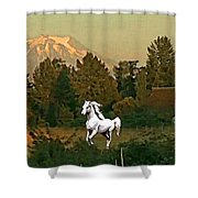 Horse Mountain And Barn Shower Curtain