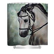 Horse N.1 Shower Curtain