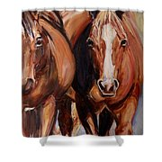 Horse Oil Painting Shower Curtain