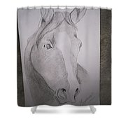 Horse On Paper  Shower Curtain