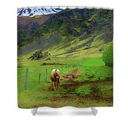 Horse On The South Iceland Coast Shower Curtain