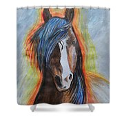 Horse Orange Shower Curtain