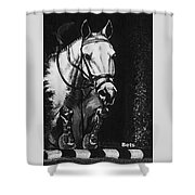Horse Painting  Jumper No Faults Black And White Shower Curtain