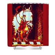 Horse Painting Jumper No Faults Deep Blues And Reds Shower Curtain