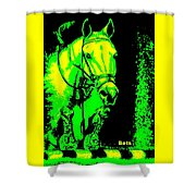 Horse Painting Jumper No Faults Green And Yellow Shower Curtain