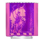 Horse Painting Jumper No Faults Hot Pink Shower Curtain