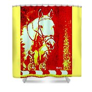 Horse Painting Jumper No Faults Red And White Shower Curtain