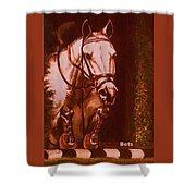 Horse Painting Jumper No Faults Soft Browns Shower Curtain
