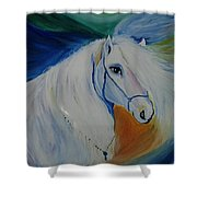 Horse Painting- Knight In Dream Shower Curtain