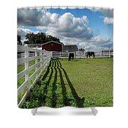 Horse Pen Shower Curtain