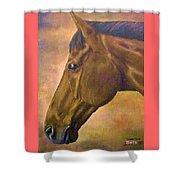 horse portraint PRINCETON pastel colors Shower Curtain