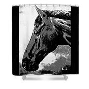 horse portrait PRINCETON black and white Shower Curtain