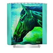horse portrait PRINCETON blue green Shower Curtain