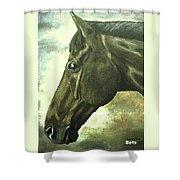 horse portrait PRINCETON bright light Shower Curtain