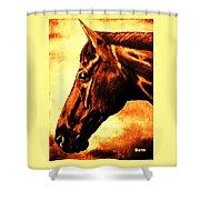 horse portrait PRINCETON brown tones Shower Curtain