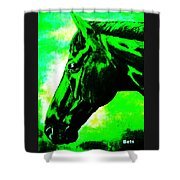 horse portrait PRINCETON green and black Shower Curtain